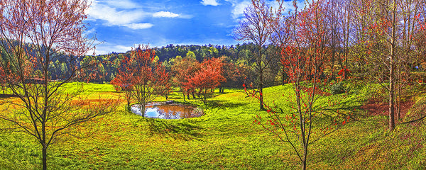 Ole Swimming Hole, South Carolina Panoramic Standard Art Print