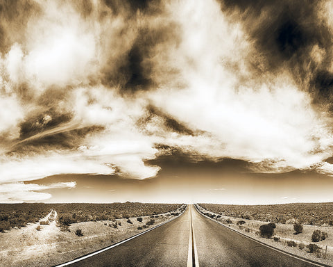 Which Road to Take Sepia Standard Art Print