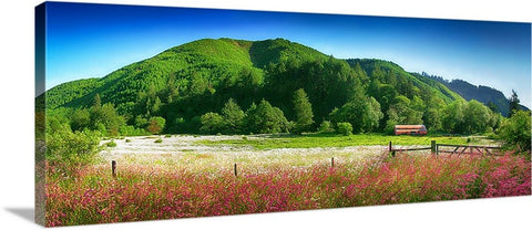 White Flower Meadow Panoramic Canvas