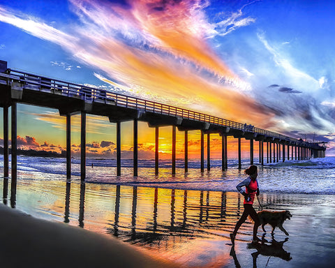 Who's Walking Whom, Scripps Pier, La Jolla, California