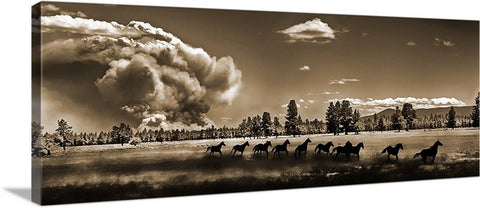 Wild Horse Fire Sepia Panoramic Canvas