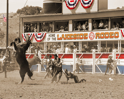 Wild Horse Race, Lakeside Rodeo, California