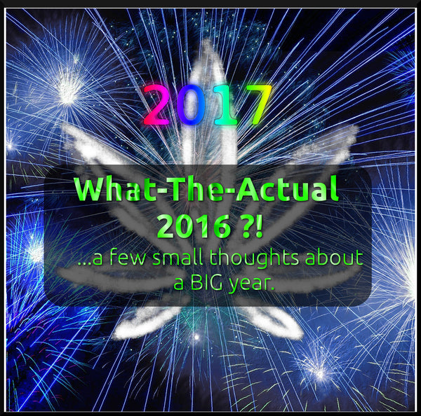 What-The-Actual 2016 ?! ( a review of sorts...)