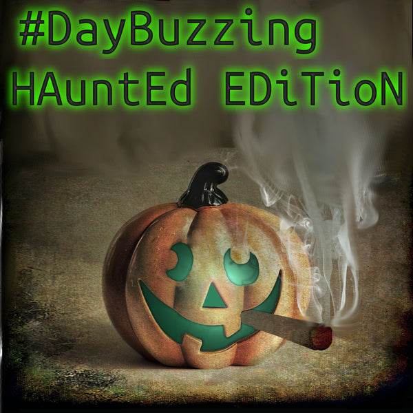 **SpEcial  HaUNtEd EdItIOn**