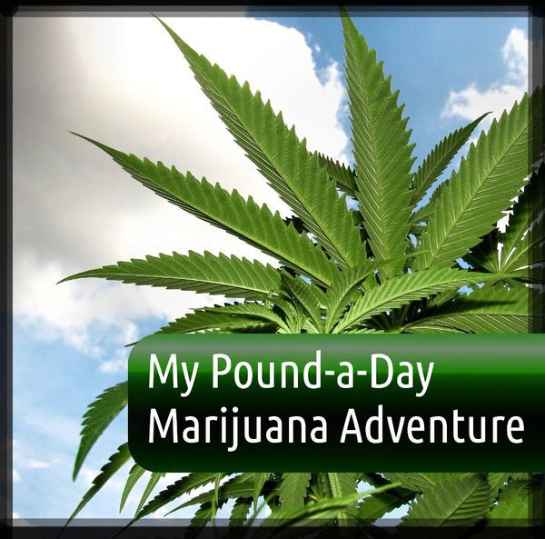 "My ""Pound-A-Day"" Cannabis Adventure"