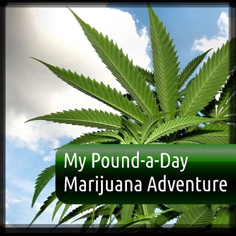My Cannabis Pound a Day