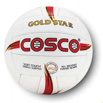 Volleyball - Cosco Gold Star