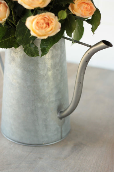 Dulce Watering Can