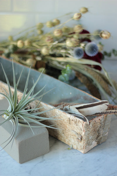 DIY Holiday Centerpiece Kit