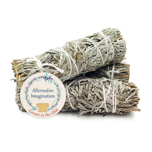 Blue Sage Smudge Sticks (Pack of 3)