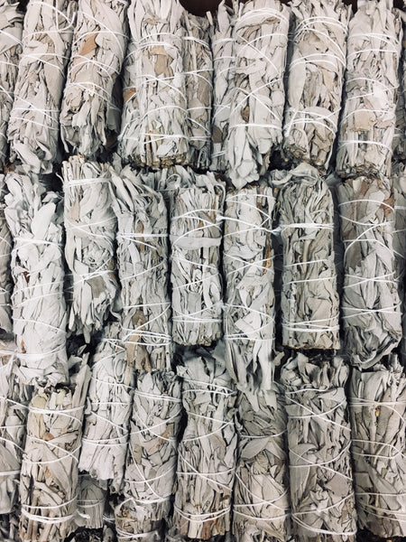 "Bulk Box of 4"" California White Sage - 100 Bundles"