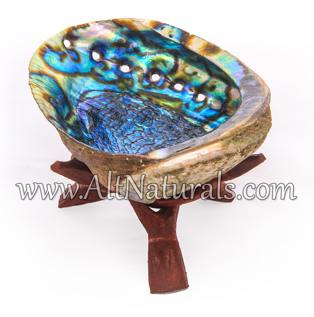 "5""+ Hand-selected Premium Abalone Shell with 6"" Wooden Cobra Stand"