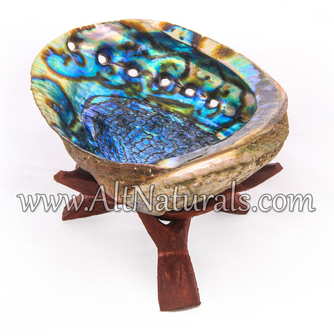 "5""+ Hand Selected Premium Abalone Shell with 6"" Wooden Cobra Stand"