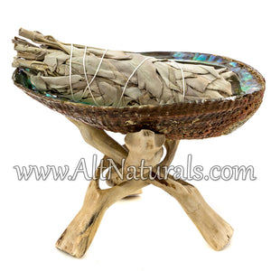 "6.5""+ Abalone Shell with Natural Wooden Tripod Stand and 5"" California White Sage Smudge Stick"