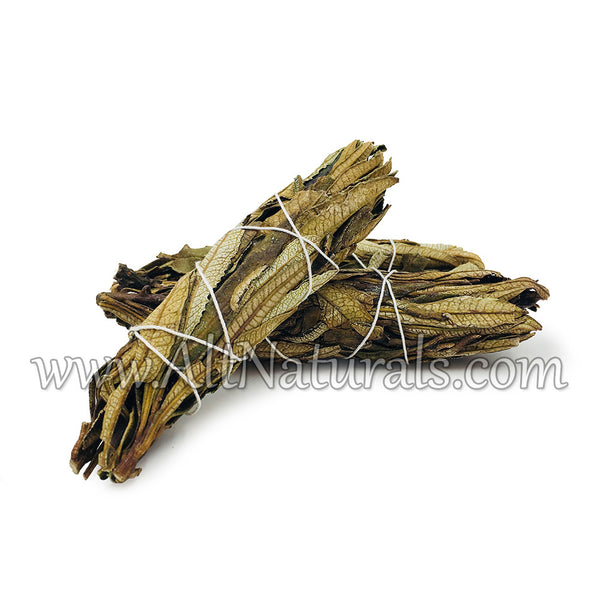 Yerba Santa Incense Bundle (Pack of 3)