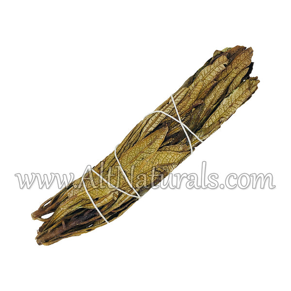 Incense Sampler - Cedar, Sweetgrass, Juniper, Blue Sage, Yerba Santa