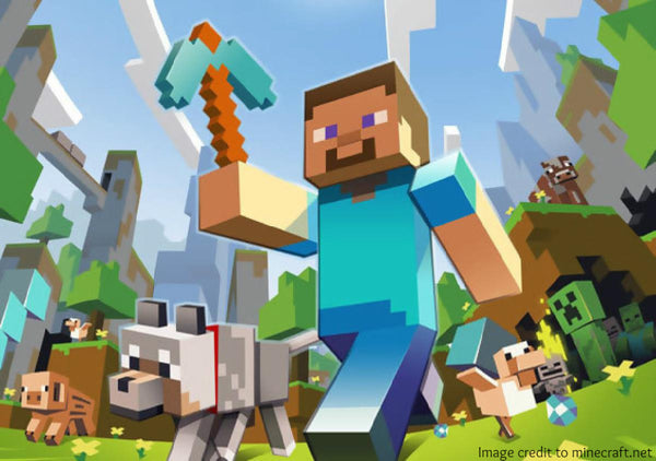 DigiKid Classes Minecraft Programming - year round after school program