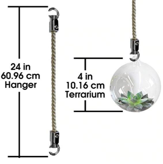 Mini Blown Glass Hanging Terrarium / Terrario Colgante