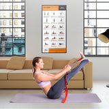 Full Body Stretching Exercise Poster