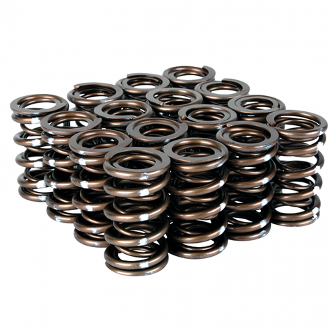Skunk2 Racing Pro XP Valve Spring Set - B/ H VTEC 311-05-7350