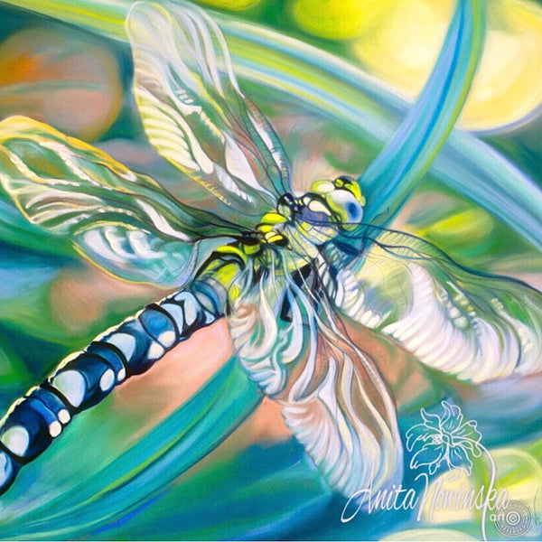 Original Butterfly & Dragonfly Paintings