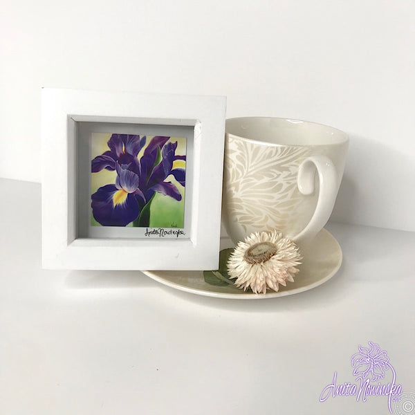 Gorgeous miniature floral print from Anita Nowinska flower painting, framed in white, making a perfect little gift of colour for your interior, purple tulip