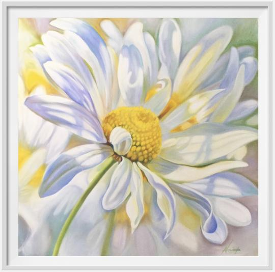 "12"" framed limited edition print of daisy flower painting by Anita Nowinska"