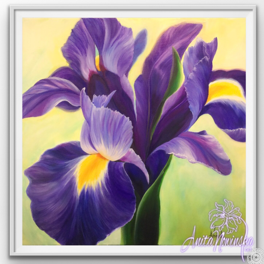 "12"" framed limited edition print of purple iris flower painting by Anita Nowinska"