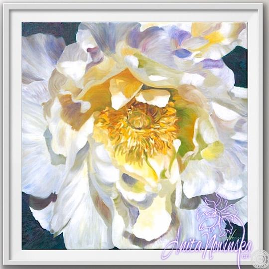 "12"" framed limited edition print of white peony flower painting by Anita Nowinska"