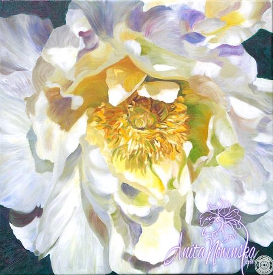large canvas wall art of white peony flower painting by Anita Nowinska