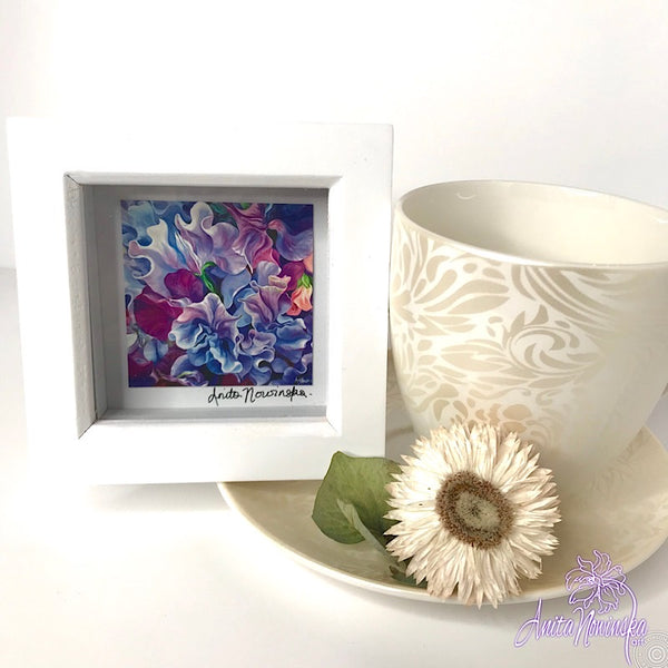 Gorgeous miniature floral print from Anita Nowinska flower painting, framed in white, making a perfect little gift of colour for your interior, sweet peas
