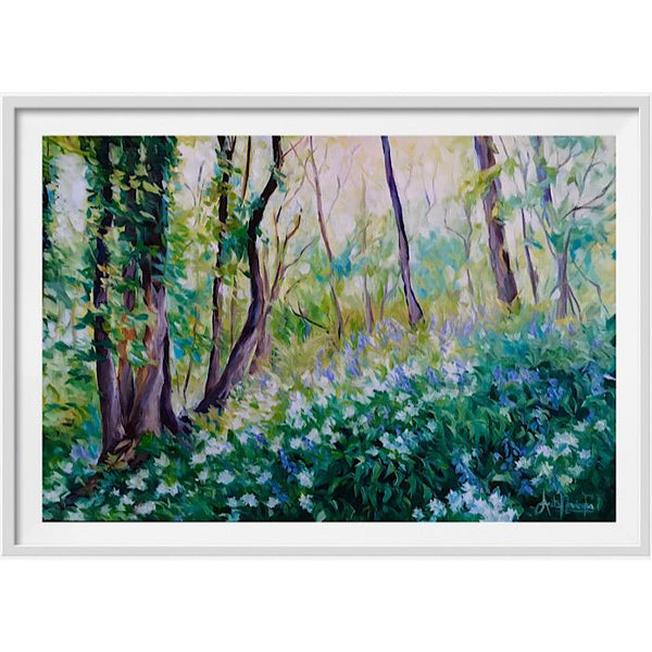 Spring Light- Bluebells woods in Oils