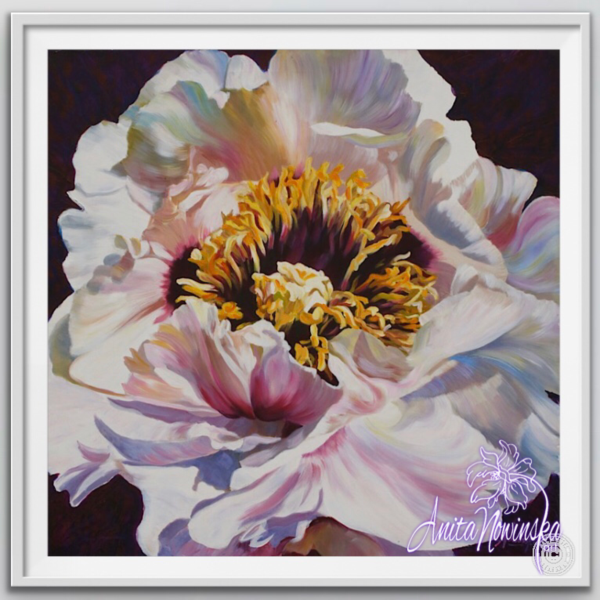 "8"" framed limited edition print of tree peony flower painting by Anita Nowinska"