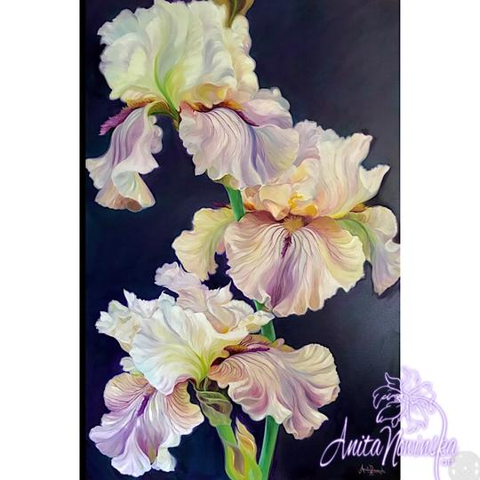 Big flower painting of irises on dark background by Anita Nowinska