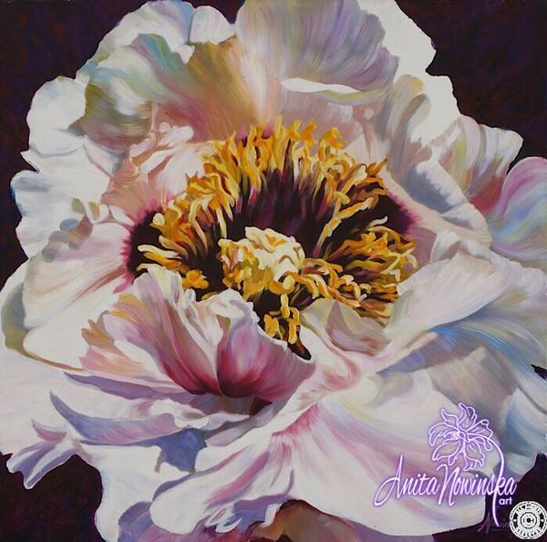 Big oil on canvas flower painting of a bright tree peony by Anita nowinska positive Thinking