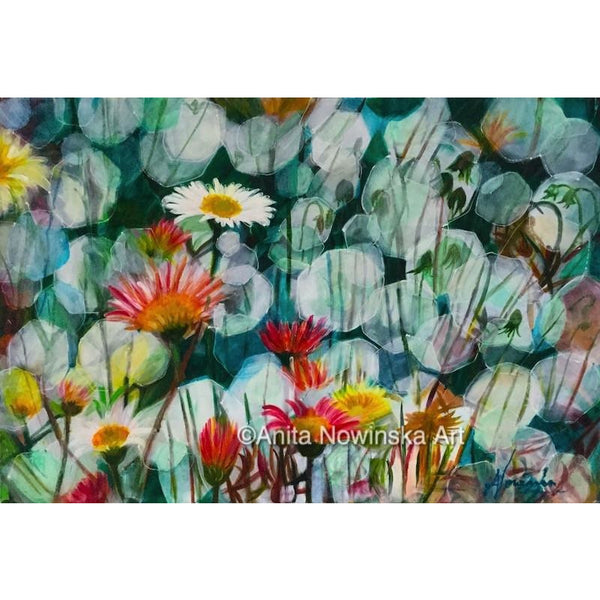 dappled daisie, daisy flower painting, anita nowinska