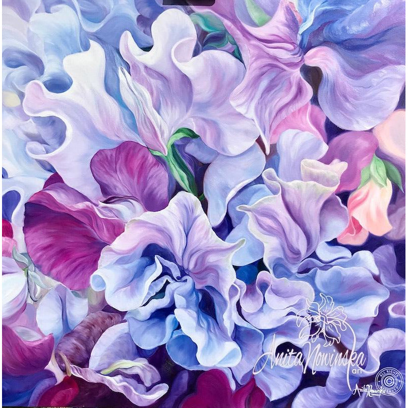 sweet peas- lilac- purple- feminine- big flower painting- oil on canvas- British Flowers- purple interiors- ultraviolet- Anita Nowinska