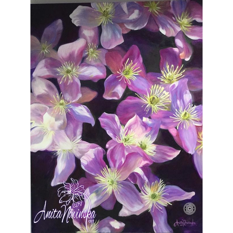 Harmony Purple Pink Clematis Oil On Canvas Flower Painting
