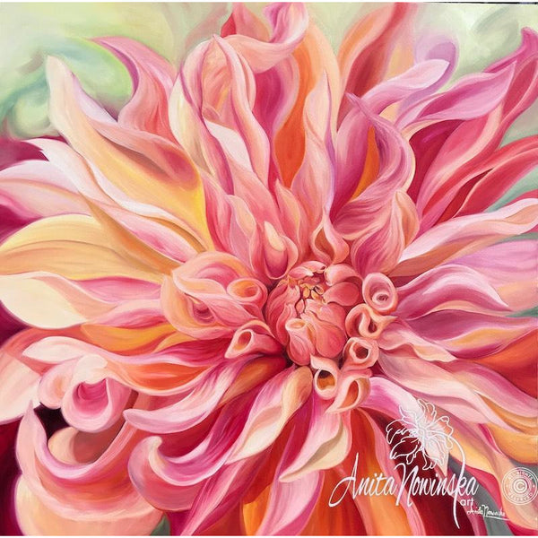 peach orange Dahlia - labyrinth dahlia- big flower paintings- interiors- Anita Nowinska- oil on canvas- floral art