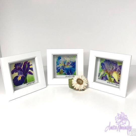small framed floral prints of blue & purple iris flower paintings