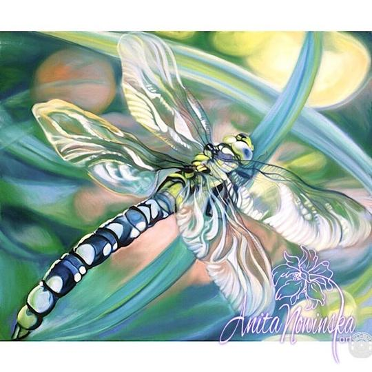 limited edition print of turquoise dragonfly painting by Anita Nowinska