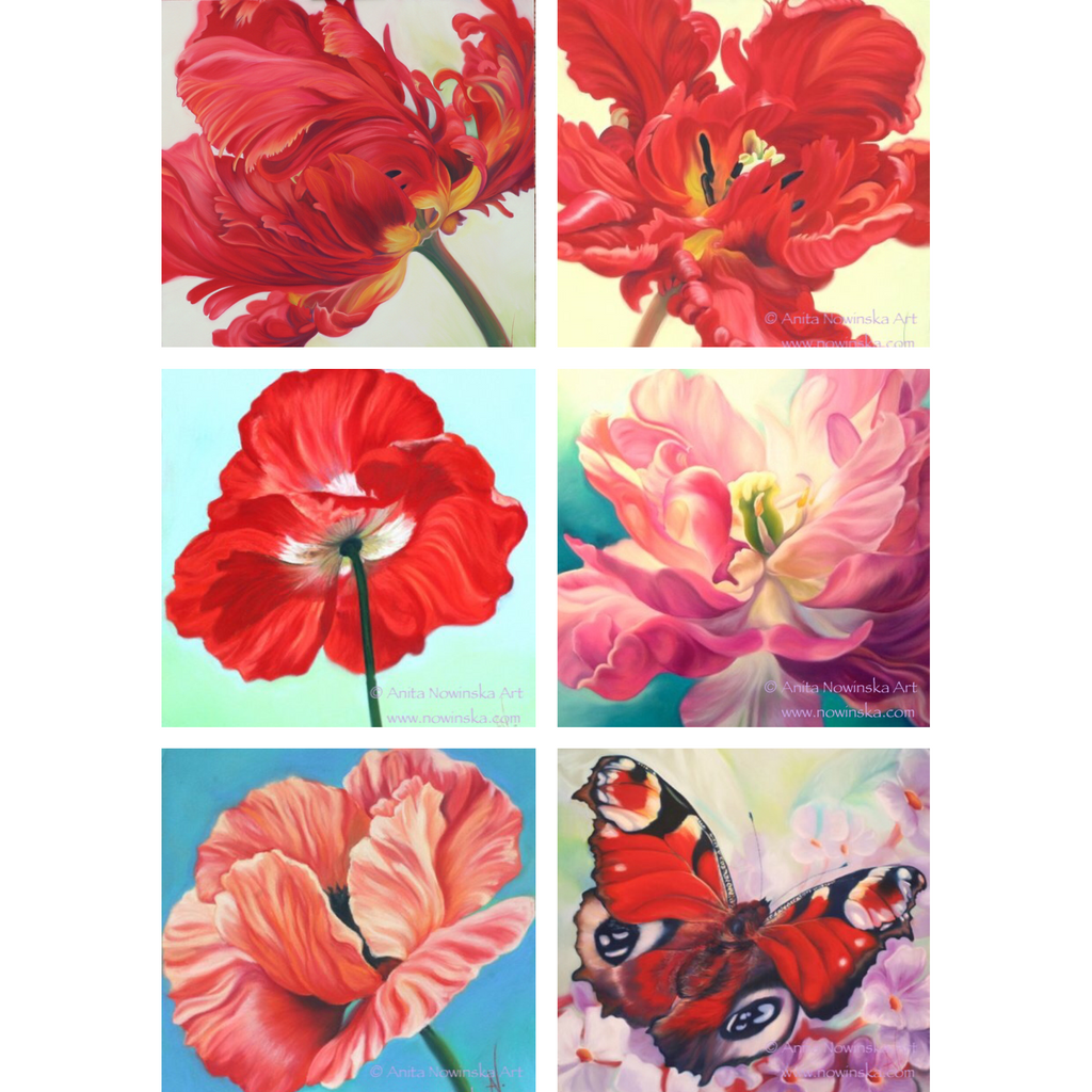 Pack Of 6 Assorted Reds Pinks Feelme Art Greetings Cards