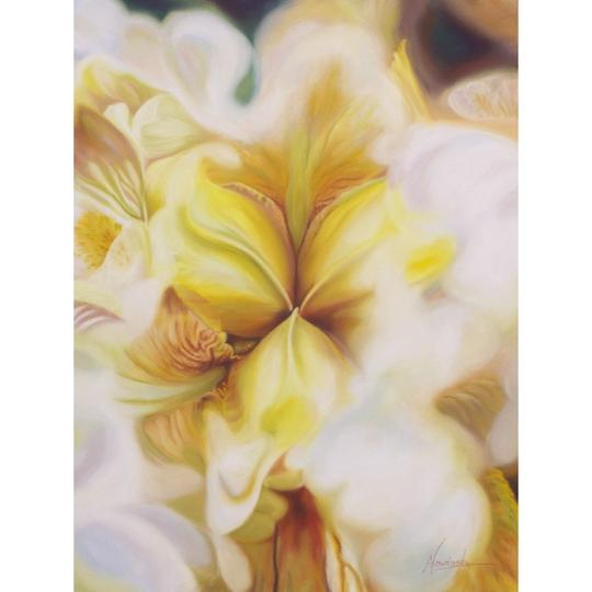 limited edition print of yellow iris flower painting by Anita Nowinska