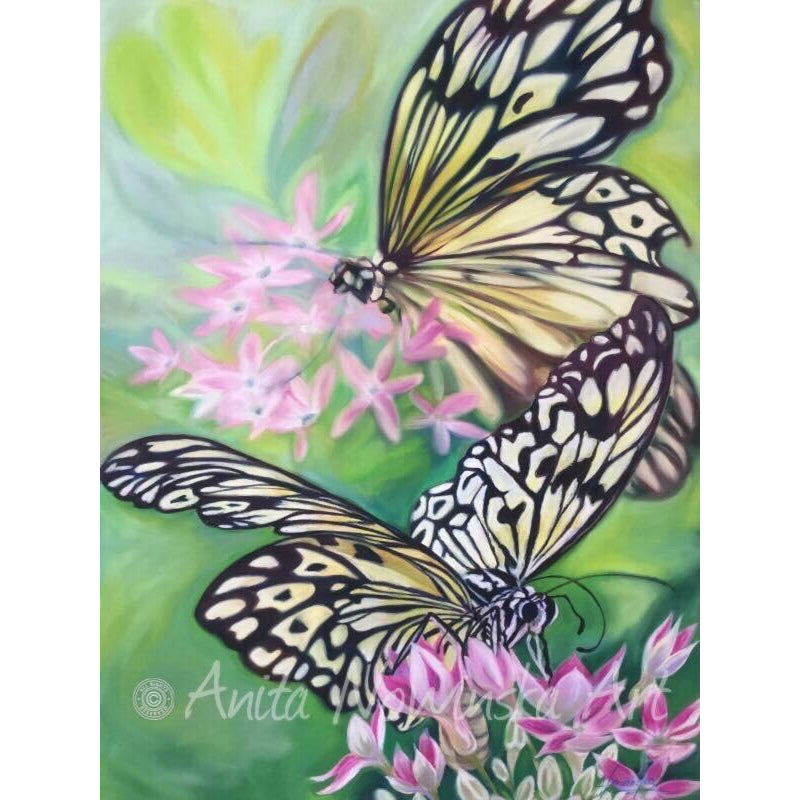 085 'Time to Fly'- black & white Ricepaper butterfly painting- Limited Edition Giclee, White Rose