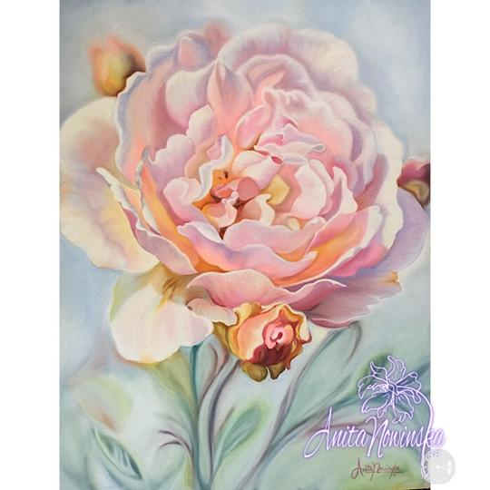 flower painting of soft pink rose on blue by Anita Nowinska
