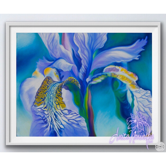 framed A3 print of blue flag irisflower painting by Anita Nowinska
