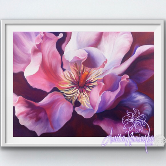 framed A3 print of pink magnolia flower painting by Anita Nowinska