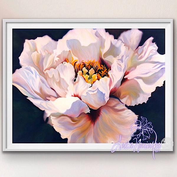 framed A3 print of tree peony flower painting by Anita Nowinska