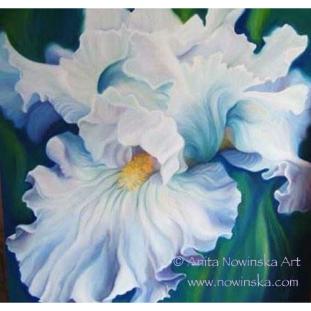 Pack of 4, 'Feelme' Art Greetings Cards-  Romance, Blue Iris