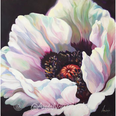 White Oriental poppy- Poppy flower painting - Anita Nowinska - oil on canvas